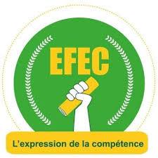 Institut des Sciences pour l'Entreprise et la Gestion/ Ecole de Formation et d'Etudes Commerciales (ISEG/EFEC)