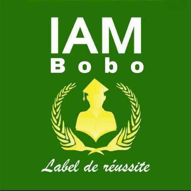 Institut Africain de Management (IAM)