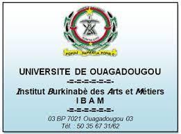 Institut Burkinabé des Arts et Métiers (IBAM)