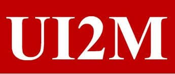 Universal Institute Mining Management (UI2M)